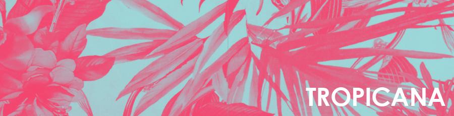 coleccion tropicana lecarre